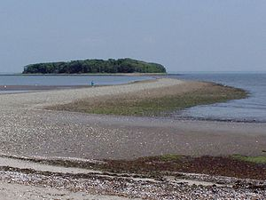 Charles Island - Charles Island at low tide, including the tombolo