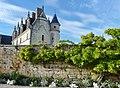 Chateau Amboise 3 sept 2016.jpg