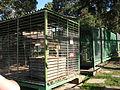 Chelyabinsk Zoo 10.JPG