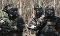 Chemical, Biological, Radiological and Nuclear Defense Training 150205-M-TI204-807.jpg