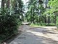 Chernihivs'kyi district, Chernihivs'ka oblast, Ukraine - panoramio (1).jpg