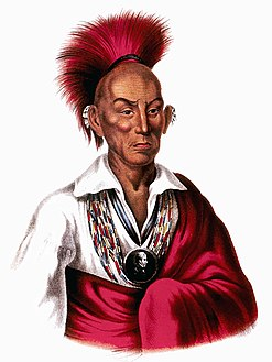 Chief Black Hawk3.jpg