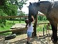 Child hugs a horse.jpg