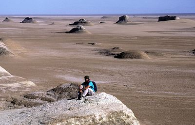 """Geologist, sedimentation expert and Mars Science Laboratory team member David Rubin of the USGS Pacific Coastal and Marine Science Center investigates longitudinal dunes in China's Qaidam Basin.""[47]"