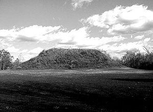 Winterville Site - Mound A, the largest mound at the site