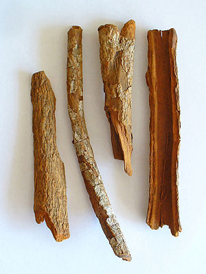 Phlobaphene - Cinchona officinalis bark