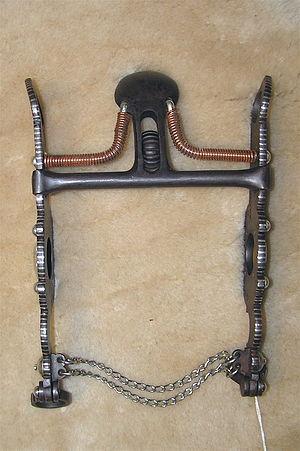 Spade bit (horse) - A spade bit