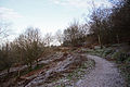 Clent Walk 2nd Jan (3159630777).jpg
