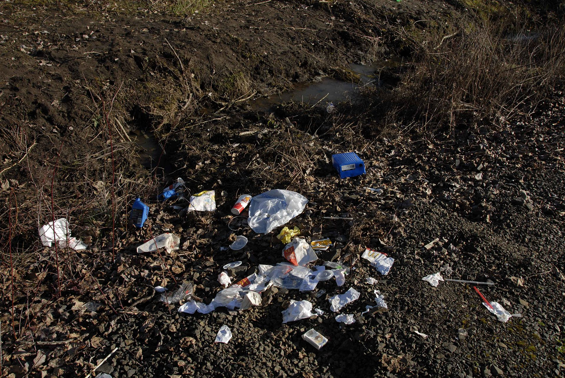 Close up image displaying trash scattered by the road side.jpg