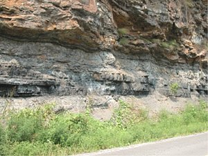 Bituminous coal seam in southwestern West Virginia