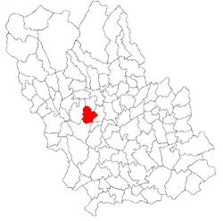 Location of Cocorăştii Mislii