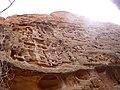 Cohab Canyon , DyeClan.com - panoramio (11).jpg