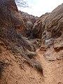 Cohab Canyon , DyeClan.com - panoramio (17).jpg