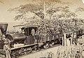 Collectie Nationaal Museum van Wereldculturen TM-60062196 Vervoer van suikerriet per trein Trinidad fotograaf niet bekend.jpg