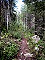 Colorado Road Trip (2819745651).jpg