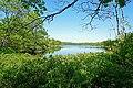 Colpitt Lake (29020145512).jpg