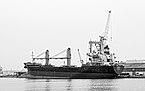Comet (ship, 1997), Sète 01BW.jpg