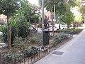 Comienza la segunda fase de rehabilitación de las zonas verdes del Parque de las Avenidas 06.jpg