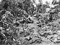 Commandos Tarakan Ridge (089449).jpg