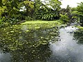 Costa Rica (6109878053).jpg