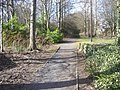 Country Park Pathway - geograph.org.uk - 3393729.jpg
