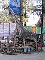 Cox's Bazar street scene 03.jpg