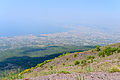 Crater rim Vesuvius view - Campania - Italy - July 9th 2013 - 02.jpg