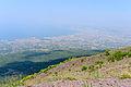 Crater rim Vesuvius view - Campania - Italy - July 9th 2013 - 02.jpg