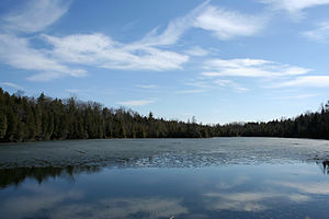 Steeles Avenue - Image: Crawford Lake 2010 03 18 001
