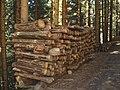 Cumulo legna auronzo.jpg