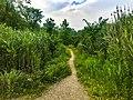 Cuyahoga Valley National Park (c87c2920-de18-4a1b-b765-b74bed6d8f64).jpg