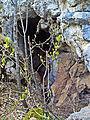 Cvetanovo izhle Zelenigrad BG.jpg