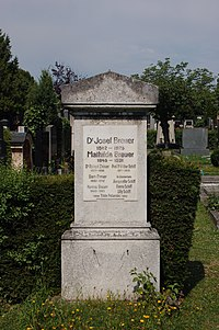 Döblinger Friedhof - Josef Breuer.JPG
