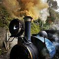 DHR steamer.jpg