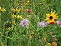 DSCF0213 - Flickr - USDAgov.jpg