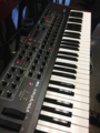 DSI Prophet '08 - left side view - Orlando Synthesizer Meetup Dec 2016 (2016-12-04 (28) by Mac Rutan).png