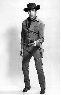 dale robertson actor