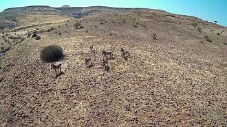 Damaraland - Rugged Landscape of Damaraland