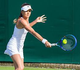 Daniela Hantuchová 4, 2015 Wimbledon Championships - Diliff.jpg