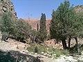 Dardeh-Cheshmesar - panoramio.jpg