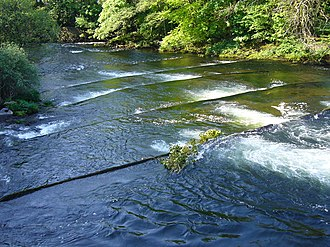 River Dart - The River Dart showing the lower part of the fish ladder near Buckfastleigh.