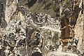 Davidraju Himachal Pradesh (103).jpg
