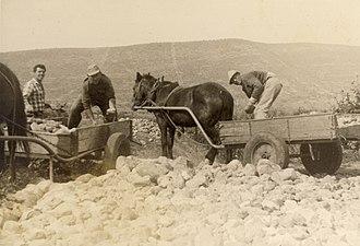 Betzet - Building the road to Betzet, 1950s