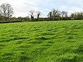 Derryhaw Townland - geograph.org.uk - 617820.jpg