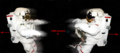 Deux cosmonautes se repoussent.png