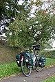 Devon-56-Apfelbaum-2004-gje.jpg