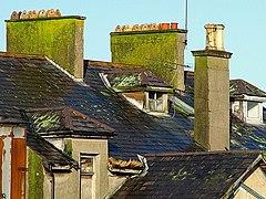 Dilapidated buildings, Bangor - geograph.org.uk - 1024050.jpg