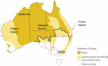 Dingo-Distribution-Fleming.png