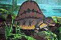 Diorama of a Permian forest floor - Dimetrodon 2 (44977912954).jpg