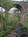 Disused Railway Viaduct, Lintley - geograph.org.uk - 46698.jpg
